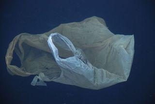 Plastic_bag_medium